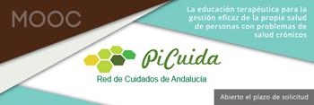 mooc_picuida_small