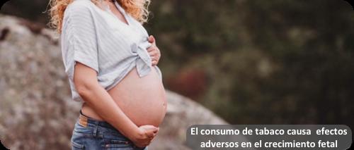 tabaco-embarazo